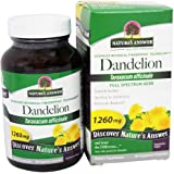 Nature's Answer Dandelion Root Vegetarian Capsules, 90-Count