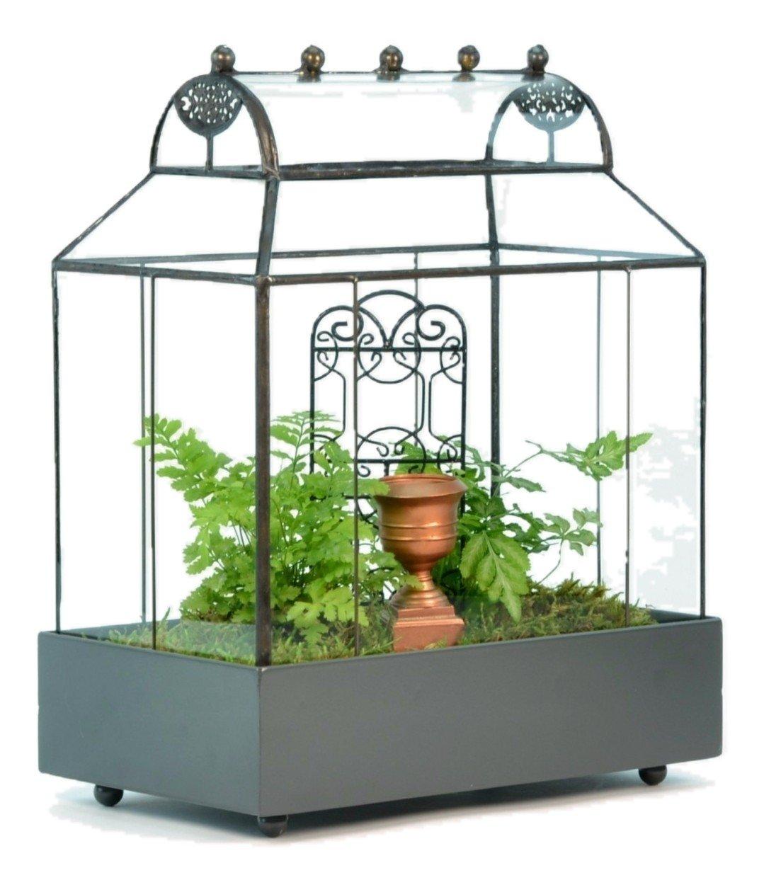 H Potter Barrel Roof Wardian Case Terrarium Succulent Planter Container Glass by H Potter