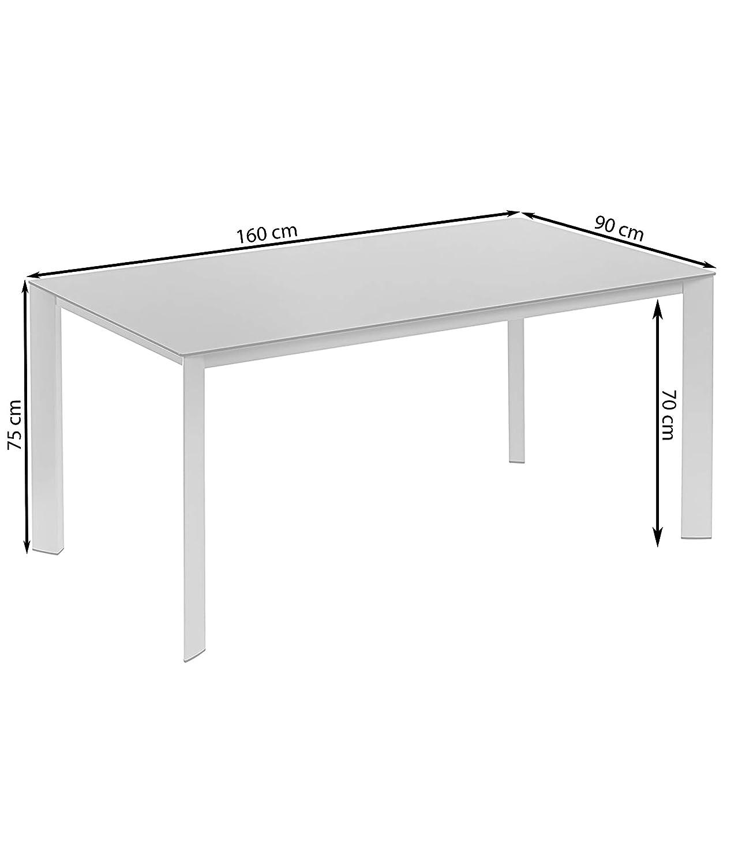 schwarz//Silber / Dehner Gartentisch Macon 160 x 90 x 75 cm ca Glas//Aluminium