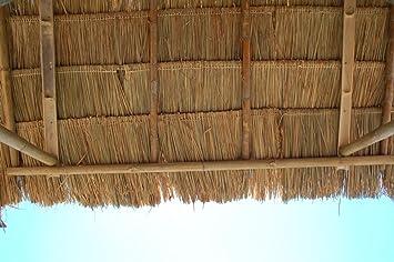 Lote de 20 panels natural para tejado de palma (115 cm) tejado exótico, refugio jardín, gazebo, sombrilla pergola (20x12111): Amazon.es: Bricolaje y herramientas