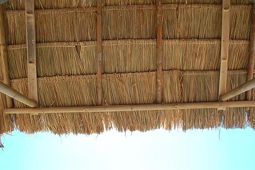 Lote de 10 panels natural para tejado de palma (115 cm) tejado exótico, refugio jardín, gazebo, sombrilla pergola (10x12111)
