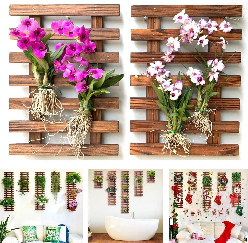 Wall Planter – 2 Pack Wooden Orchid Planter for Wall Décor, Hanging Planter for Indoor Plants, Air Plant Succulent Holder, Outdoor Vertical Garden, Room Decor for Teens