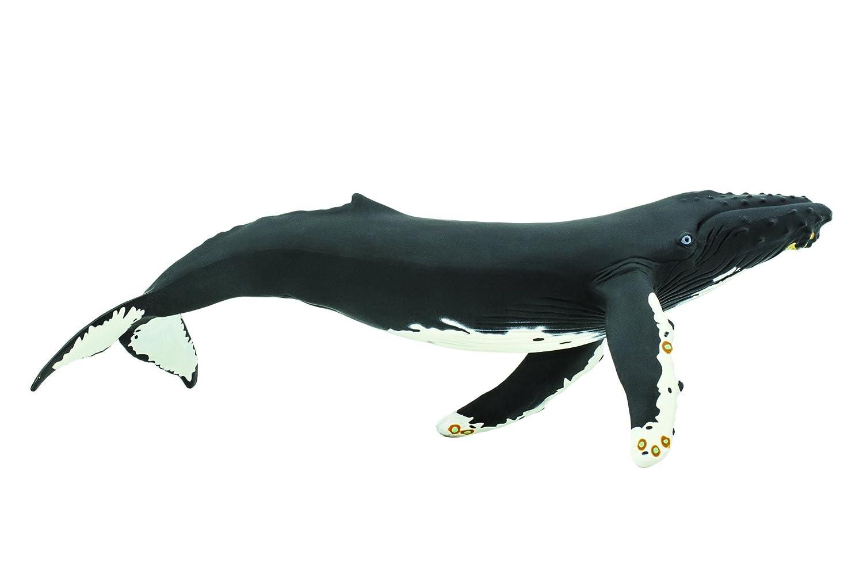Safari Ltd  Monterey Bay Aquarium Sea Life Humpback Whale 210002 B0009JK7N2