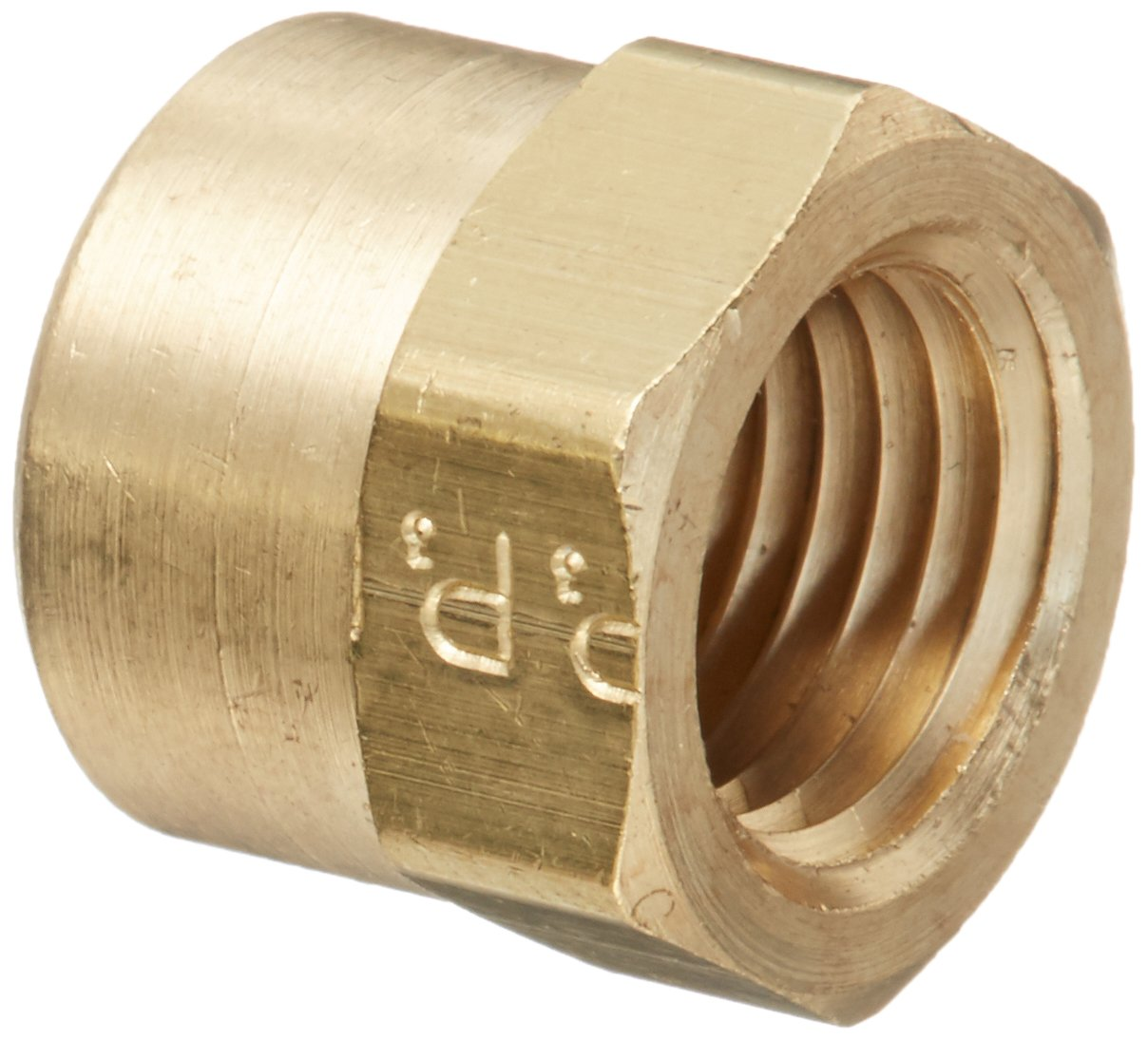 Parker Hannifin 213P-4-pk5 Pipe Fitting Cap, Brass, 1/4'' Female Thread (Pack of 5) by Parker Hannifin