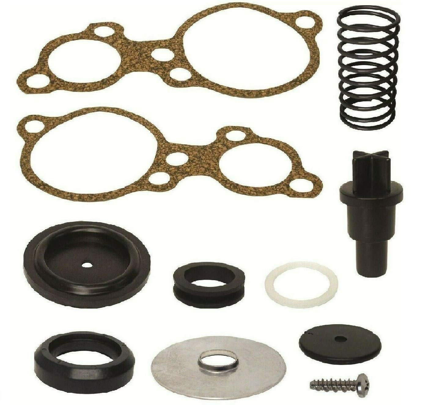 GLM Poppet Valve Kit for Mercury Mariner 135 150 175 200 Magnum II XR4 XR6 EFI DFI Hp V6 Replaces Mercury Part Number: Read Item Description for Exact Applications by GLM