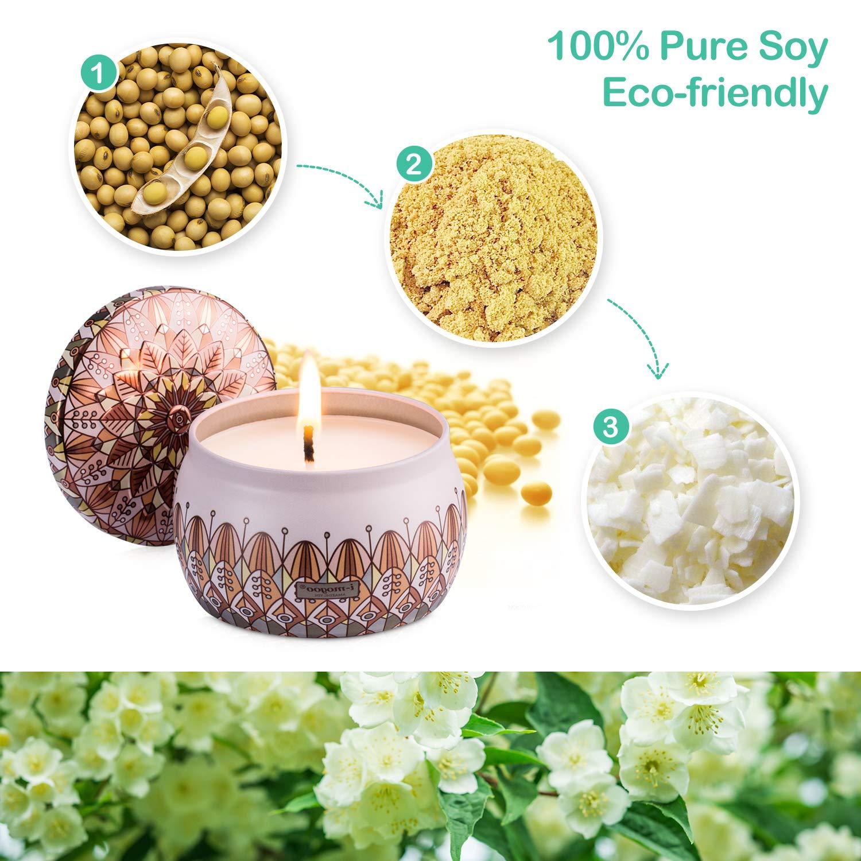 Amexi Duftkerze Jasmin, Flieder, Lavendel, Rose Duftkerzen 100% Sojawachs Aromatherapie Kerze 40Std 154g (Jasmin, Flieder)