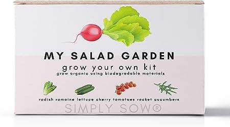 Vegetable Veg Seeds Grow Plant Own Tomato Radish Kids
