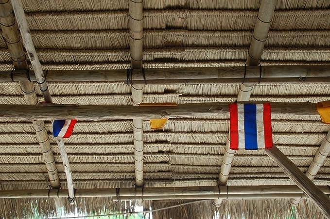 Lote de 20 panels natural para tejado de palma (115 cm) tejado ...
