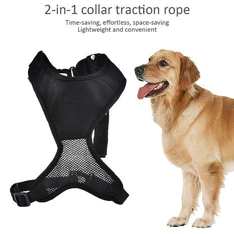 Kbsin212 - Arnés retráctil 2 en 1 para perro con hebilla magnética ...