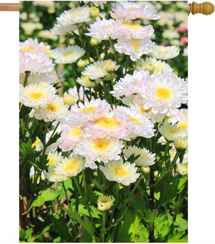 ShineSnow Spring White Flowers Daisies Summer Floral Chrysanthemum Seasonal House Flag 28