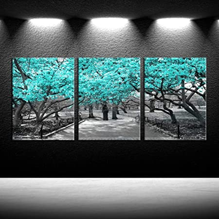Amazon Com Iknow Foto 3 Pieces Canvas Wall Art For Bedroom Black White And Teal Cherry Blossom Trees Picture Giclee Prints Home Decor Modern Framed Artwork Dining Room Kitchen Bathroom Office 12x16inchx3