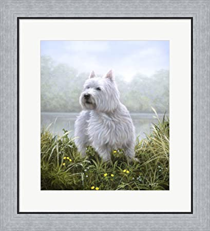 Amazon.com: Westie 5 by John Silver Framed Art Print Wall Picture ...