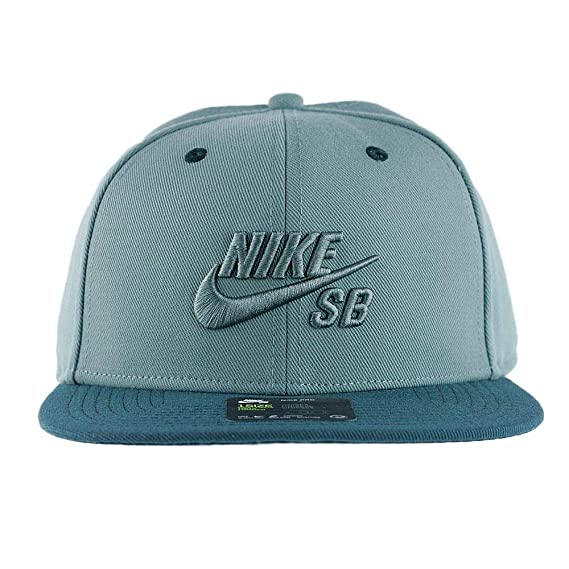Image Unavailable. Image not available for. Colour  Nike SB Icon Pro Snapback  Hat ... 7220b7e7b14