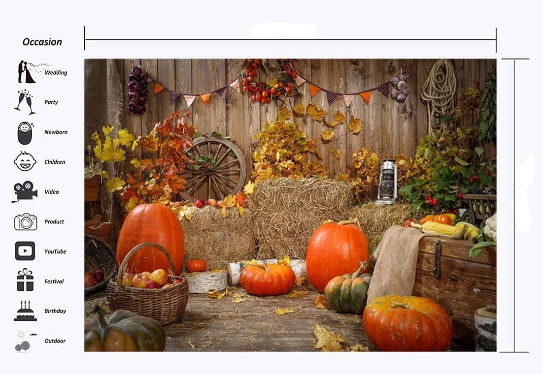 Haosphoto Happy Thanksgiving Day Backdrop 7X5FT Vinyl