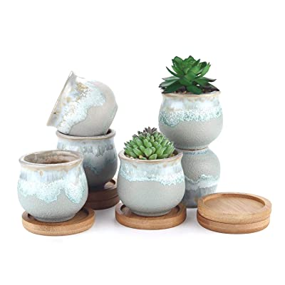 T4U Small Ceramic Succulent Planter Pots with Bamboo Tray Set of 6, Sagging Glazed Porcelain Handicraft as Gift for Mom Sister Aunt Best for Home Office Restaurant Table Desk Window Sill Decoration : Garden & Outdoor