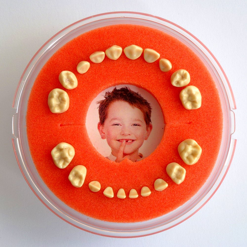 Firsty Round Baby Tooth Keepsake Organizer (yellow, boy/girl) Lumage FYR105