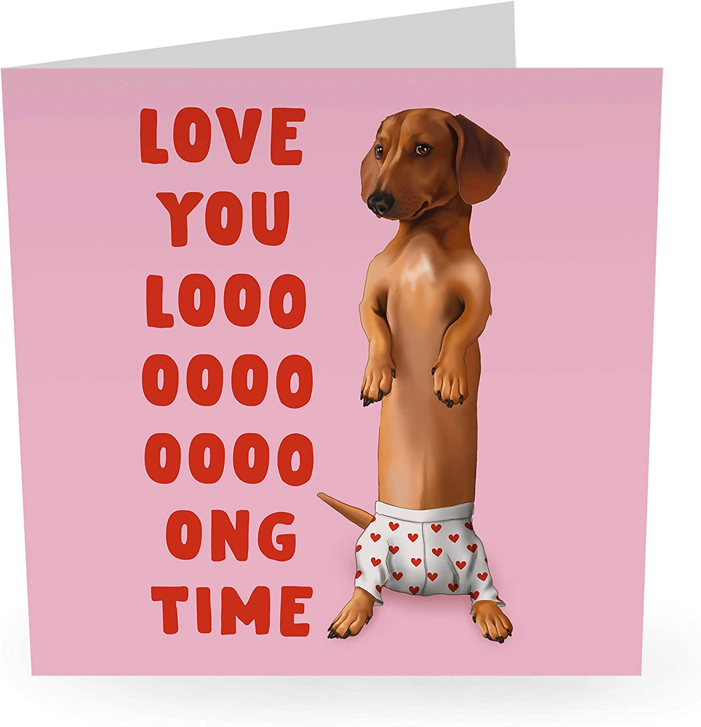 "Cute Anniversary Card Love Relationship Card Dog Pun /""Love You Long Time/"" Central 23 Husband Wife Girlfriend Boyfriend Comes with Fun Stickers"