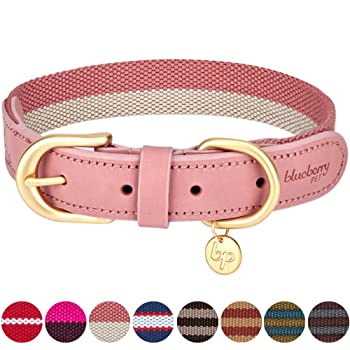 Blueberry Pet Polyester Fabric and Soft Genuine Leather Webbing Dog Collar in Pink and Grey, Small, Neck 30.5cm-38cm, Adjustable Collars for Dogs