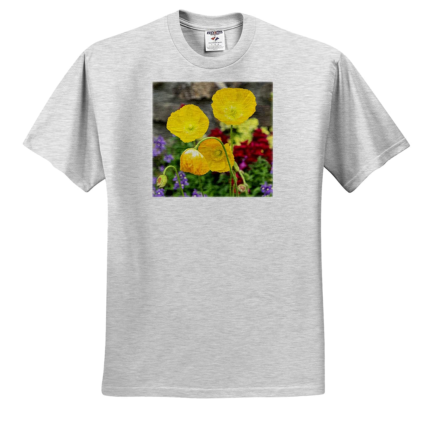 Flowers 3dRose Danita Delimont ts/_314996 Adult T-Shirt XL Iceland Poppy Pennsylvania USA