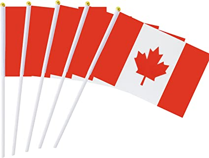 Kind Girl 25 Pack Hand Held Small Mini Flag Canada Flag Canadian Stick Flag Round Top National Country Flags Party Decorations Supplies For Parades World Cup Festival Events International Festival Garden Outdoor