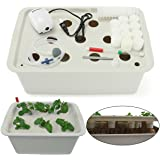 Hydroponics Grower Kit, PATHONOR 11 Pods 3.5 Gal Self Watering DIY Planting Cloner Kit Educational Hydroponics System for Transplant, Cloning, Propagation, and Hydroponic Experiment Indoor Outdoor