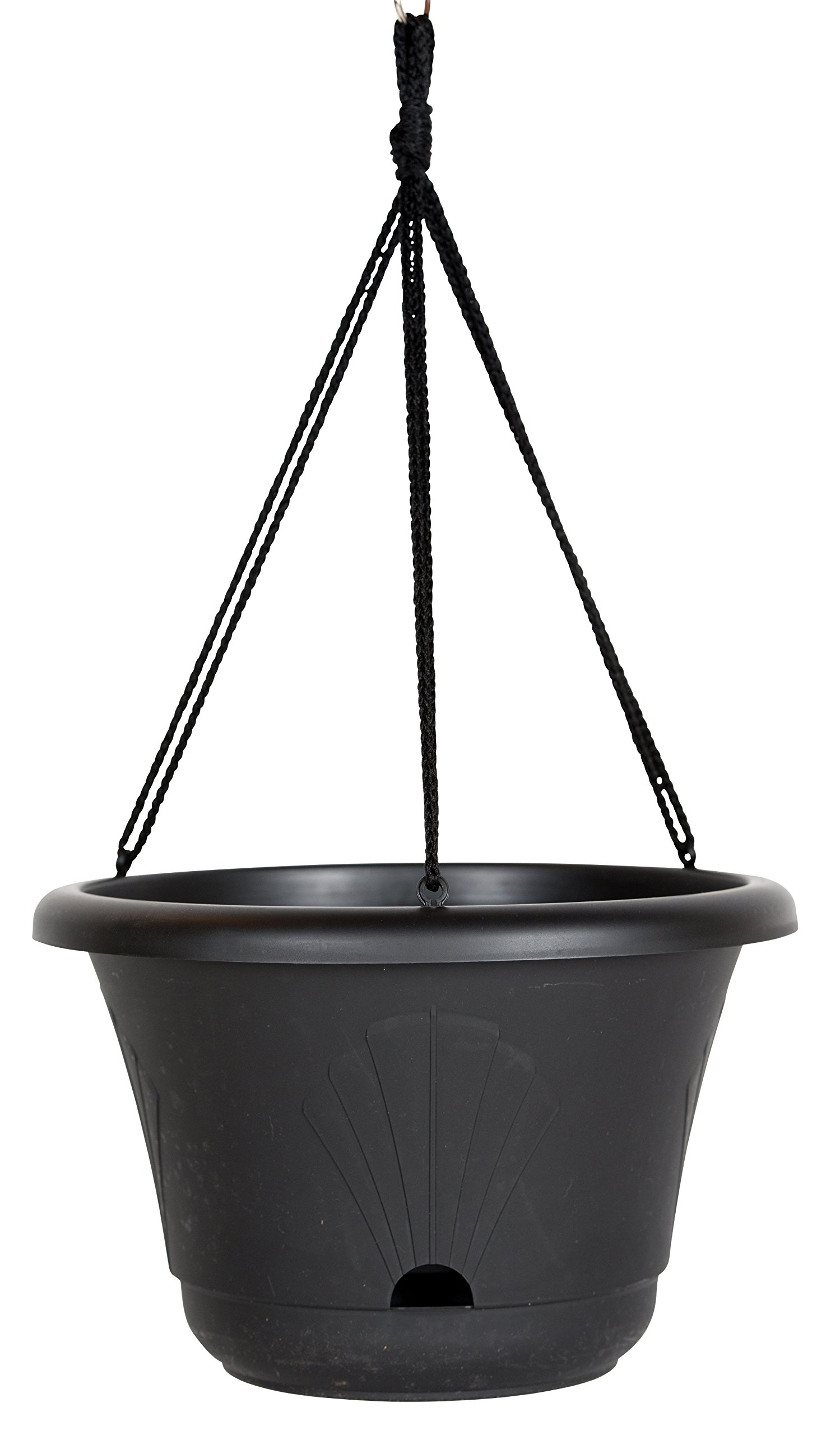 Bloem Lucca Self Watering Hanging Basket, 13'', Black