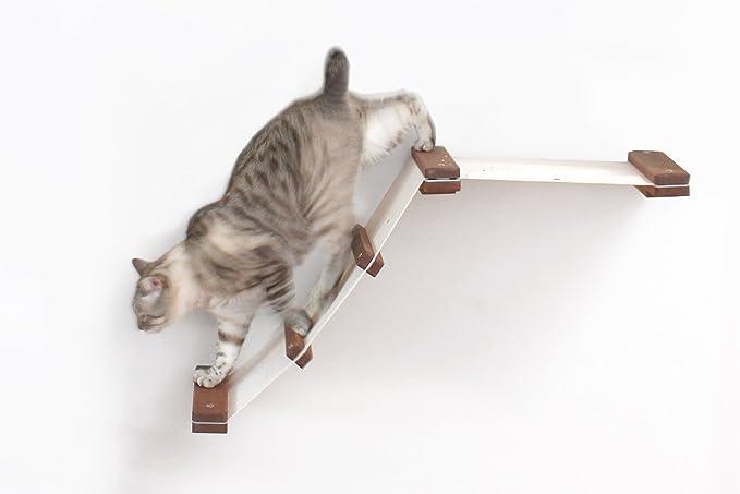 CatastrophiCreations Estantería para Gatos (montado en la Pared, sin Acabado/Natural, Talla única): Amazon.es: Productos para mascotas