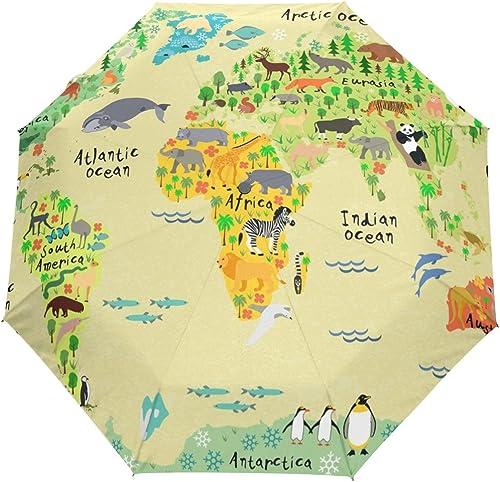 Hulahula Compass Map Automatic Umbrella Auto Open Close Folding Windproof Foldable