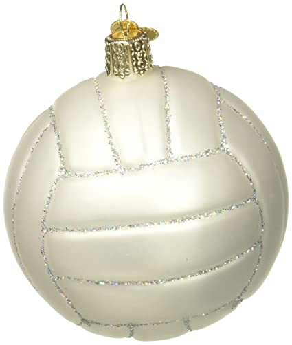 Amazon Com Old World Christmas Ornaments Volleyball Glass Blown