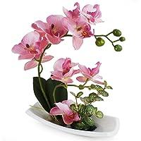 True Holiday Künstliche Orchidee mit weißer Porzellanvase, Kunstdekoration, Kunstblumen, realistisch und lebensecht