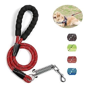 Amazon.com: Petvins – Correa para perro resistente – Cuerda ...