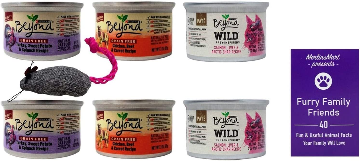 Purina Beyond Grain Free Adult Cat Food 3 Flavor Variety 6 Cans | (2) Each: Turkey Sweet Potato Spinach, Chicken Beef, Wild Salmon Arctic Char (3 Ounces) | Plus Catnip Toy and Fun Facts Booklet Bundle
