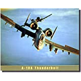 Airforce A-10A Thunderbolt Airplane Vintage Aviation Wall Decor Art Print Poster (16x20)