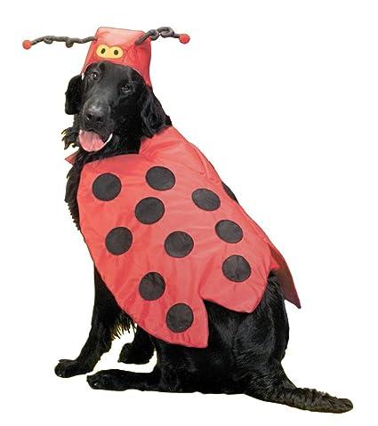 Medium Lady Bug Dog Costume - 2 Pieces  sc 1 st  Amazon.com & Amazon.com : Medium Lady Bug Dog Costume - 2 Pieces : Pet Supplies