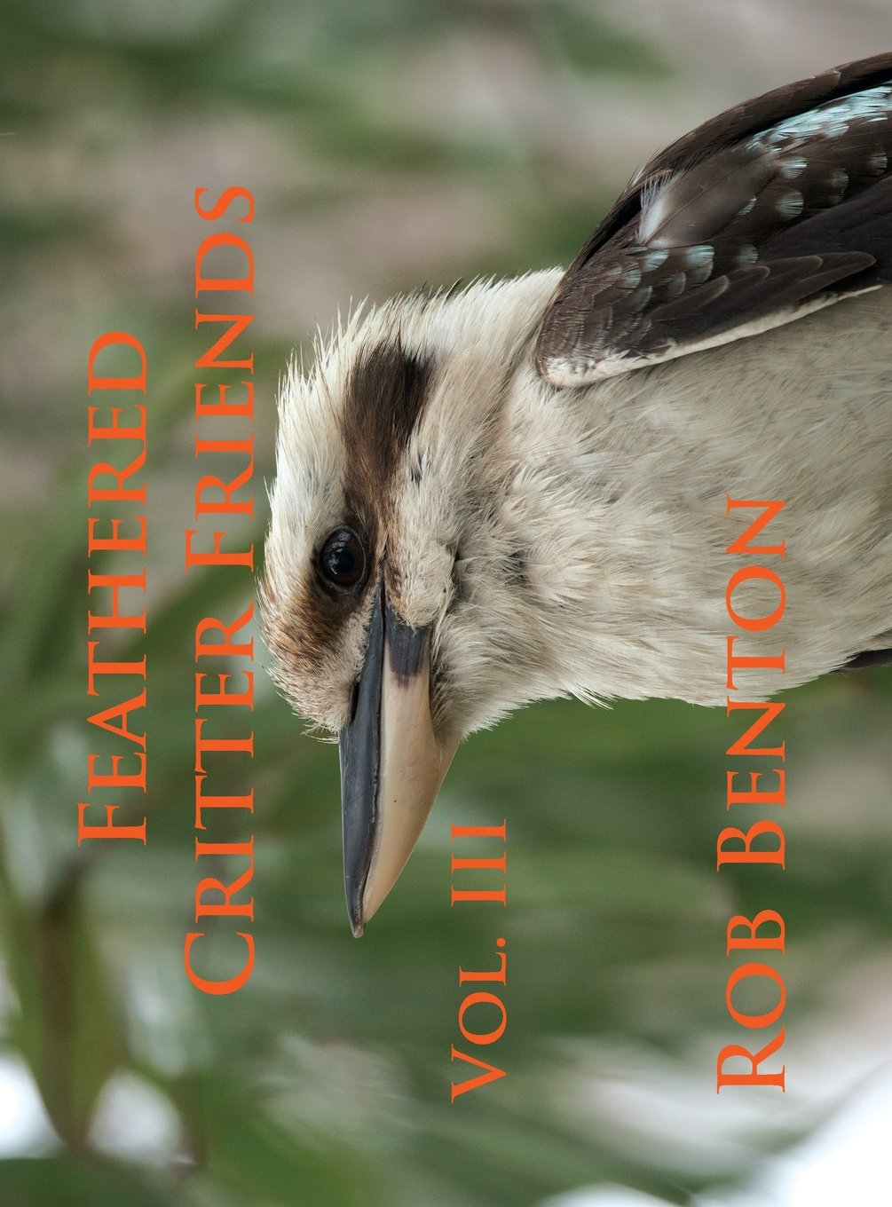 Feathered Critter Friends Vol. III PDF