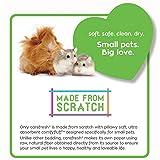Healthy Pet Carefresh Oder Stop Formula Natural