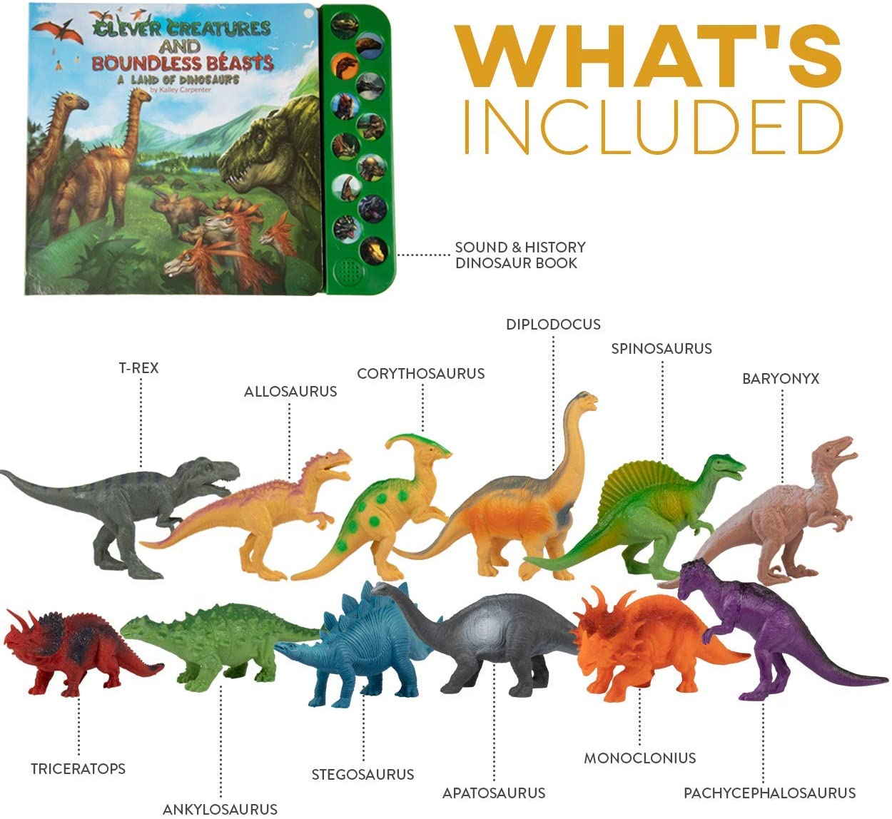 Amazon Com Li L Gen Dinosaur Toys For Boys And Girls 3 Years Old Up Realistic Looking 7 Dinosaurs Pack Of 12 Animal Dinosaur Figures With Dinosaur Sound Book Dinosaur Set With Sound Names of dinosaurs are usually based on the location of their finding, or even the names of there are a lot of dinosaur names that you can find on this page, in addition to their. li l gen dinosaur toys for boys and girls 3 years old up realistic looking 7 dinosaurs pack of 12 animal dinosaur figures with dinosaur sound