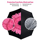 BENSO Reverse Inverted Automated Open Umbrella with Double Layer for UV Protection and Windproof - Perfect for Rainy Season