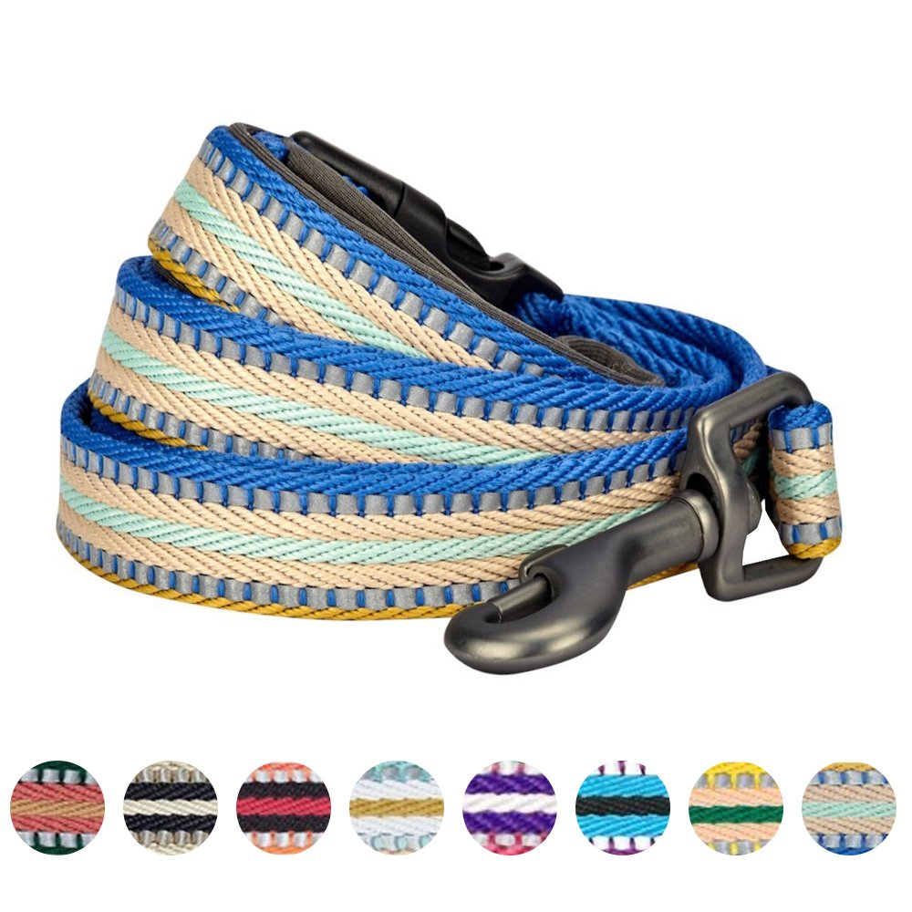 Blueberry Pet 8 Colors 3M Reflective Multi-colored Stripe Dog Leash with Soft & Comfortable Handle, 5 ft x 3/4'', Ginger & Blue, Medium, Leashes for Dogs