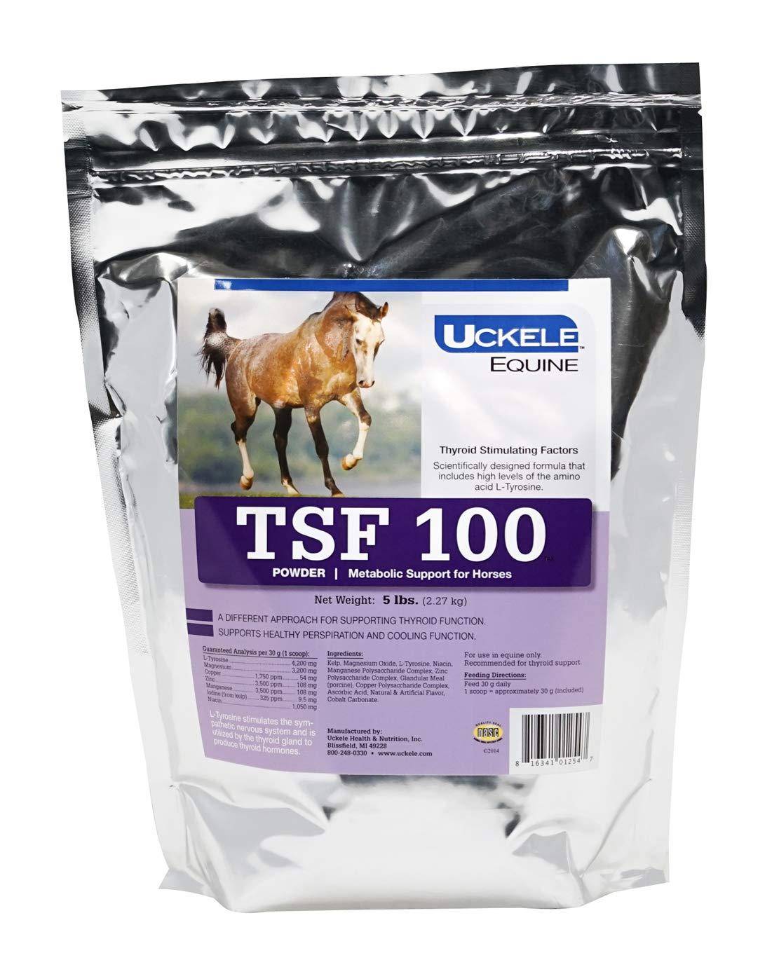 Uckele Equine TSF 100 Metabolic Support Powder, 5 Pound Bag by Uckele (Image #1)