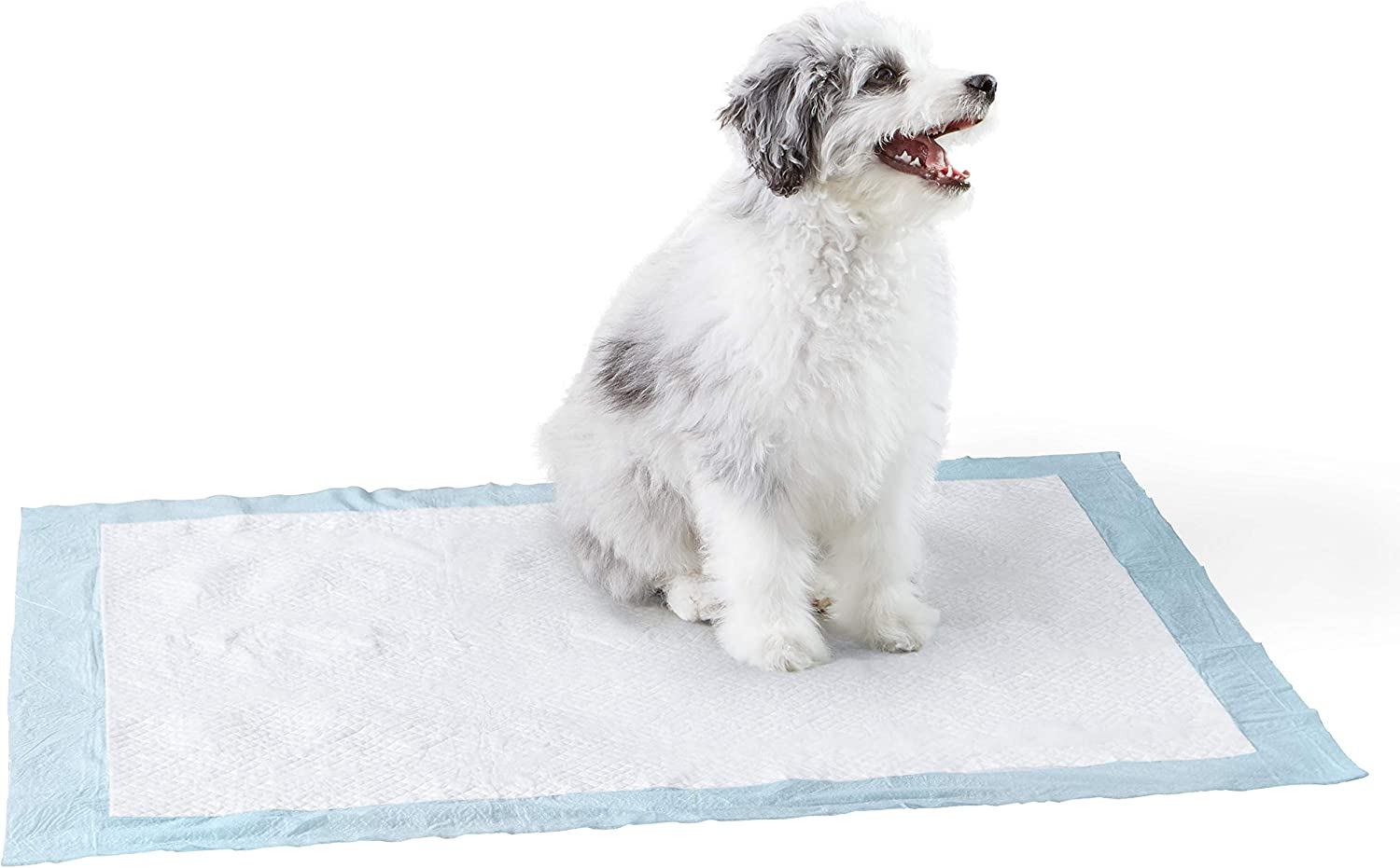 Basics Pet Training and Puppy Pads, Regular and Heavy Duty