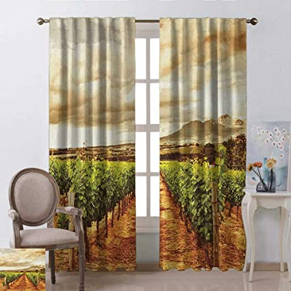 Amazon.com: youpinnong Country, Curtains Insulated, Grape ...