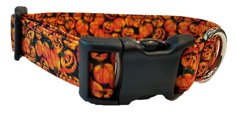 Jack o Lantern Dog Collar Halloween pumpkin orange Fall Harvest trick or treat