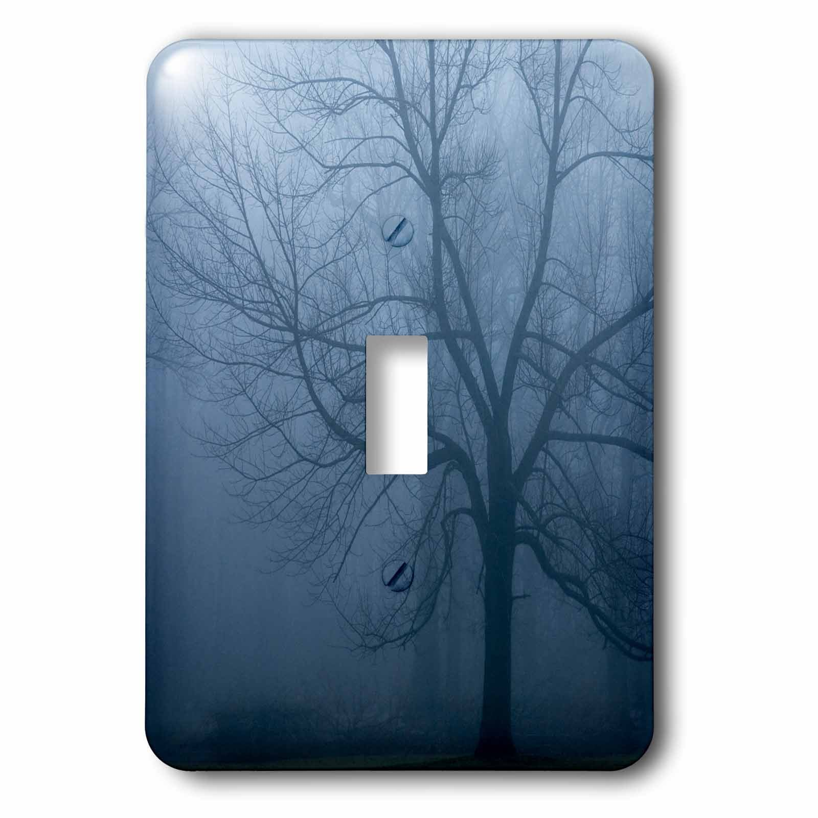 Danita Delimont - Trees - USA, Indiana. Skeleton tree in fog. - Light Switch Covers - single toggle switch (lsp_230784_1)
