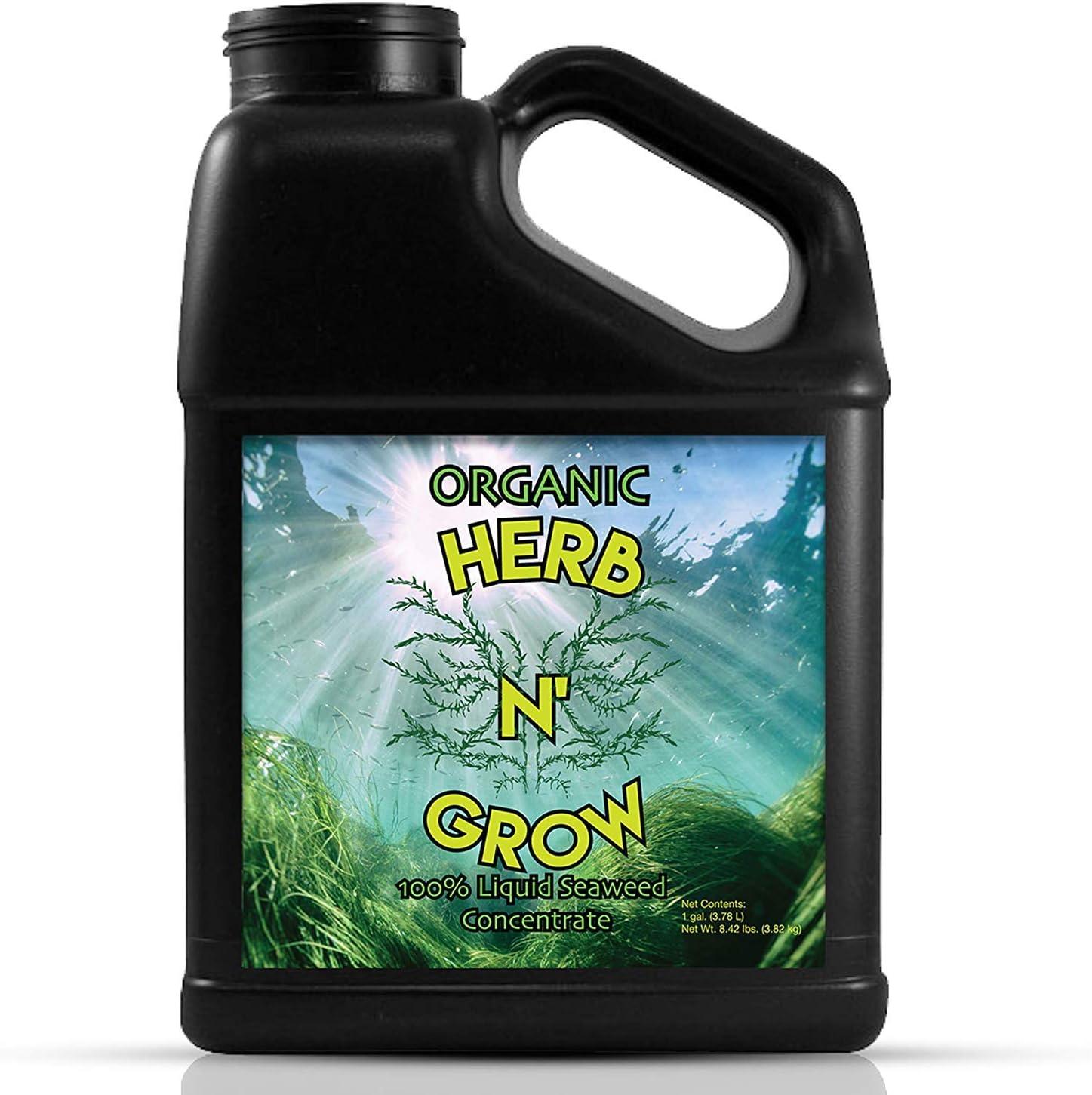 Herb N' Grow Liquid Kelp Seaweed Fertilizer - (128 Ounces) Organic Plant Food, Hydroponic Nutrients, Soil and Foliar Spray, Seed Soak. 1 Gallon