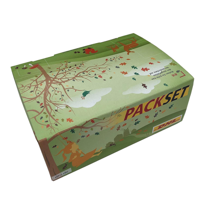 DHL Packset otoño (20 cajas) Versandkarton Faltkarton (LxBxH ...