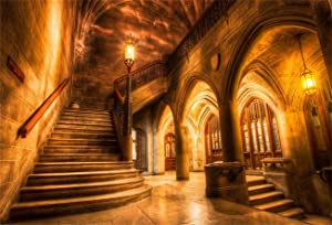 AOFOTO 8x6ft Vintage Medieval Castle Interior Backdrop Retro Archway Columns Photography Background Old Stairway Dim Light Architecture Pillars Photo Studio Props Artistic Portrait Vinyl Wallpaper