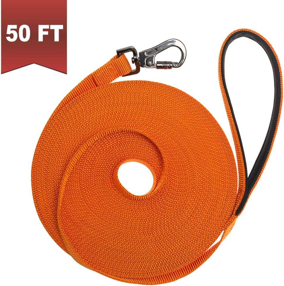 BINGPET Long Dog Leash 50ft Training Leash Pet Traction Web Rope Obedience Recall Control Lead