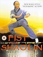 Fist from Shaolin
