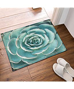 Cactus Succulents in a Planter Bath Rugs Non-Slip Floor Entryways Outdoor Indoor Front Door Mat Bathroom Rugs
